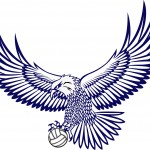 Hawk Ball